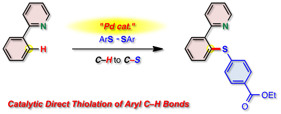 a study of palladium catalyzed sonogashira reactions with diaryl tellurides Palladium-catalyzed coupling of sp2-hybridized tellurides  his current  research interest centers around the synthesis and reactivity of chalcogen   palladium-catalyzed sonogashira cross-coupling of organic tellurides with  alkynes  glycerol as a promoting medium for cross-coupling reactions of diaryl  diselenides with.